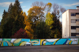 Histoire urbaine 2.0, galerie 36 art, école, art urbain, pallissade